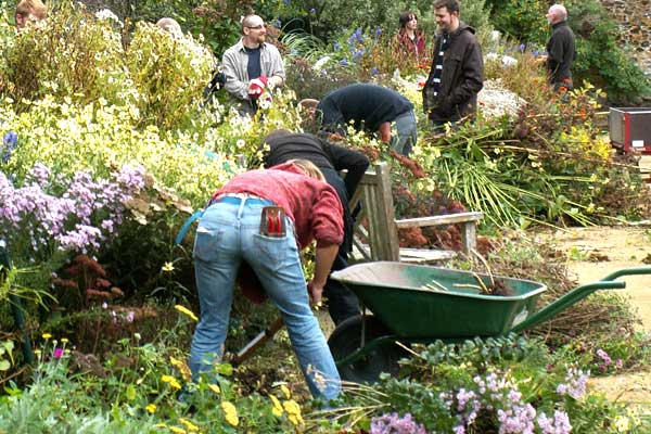 Employment Help And Advice From The Professional Gardeners Guild