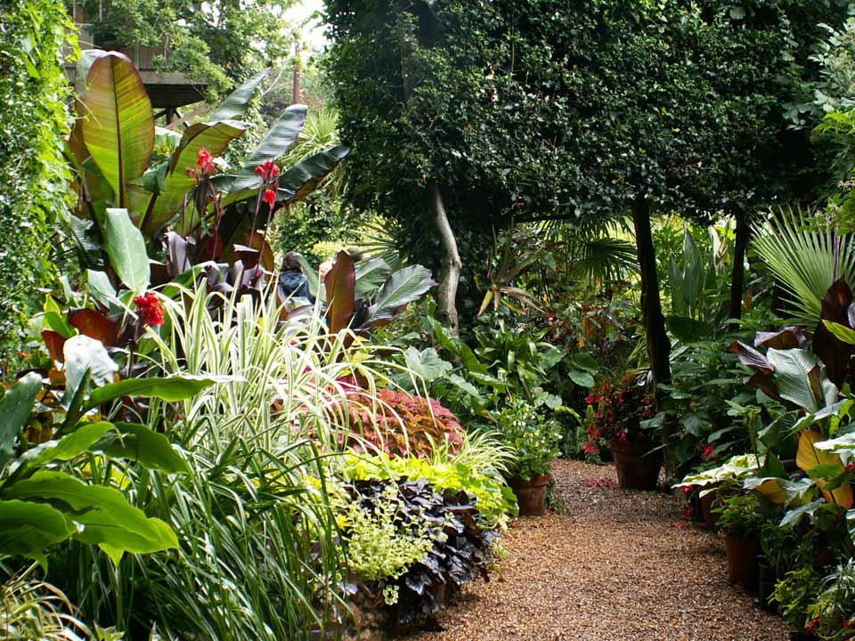 Professional Gardeners 39 Guild Visit To Norwich Exotic