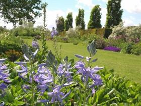 Pgg Visit To Broadview Gardens Tonbridge Kent