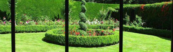 Photos: Matson Ground Garden July '17