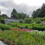 Matson Ground Garden, Cumbria
