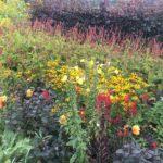 PGG Helmsley Walled Garden