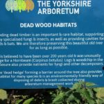 PGG Yorkshire Arboretum