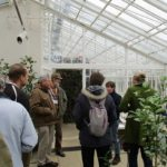 PGG Visit to Chiswick House