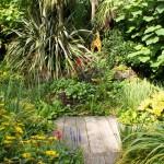 PGG visit to Dewstow Gardens