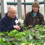 Breeding instructions - PGG visit to Ashwood Nursery 2011