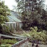 West Dean Gardens in 1991 before restoration