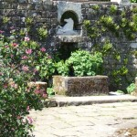 In the walled garden at Wallington