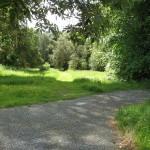 PGG visit to Kilmacurragh Botanic Gardens
