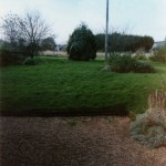 Back garden of 108 in1999