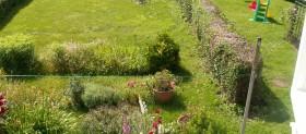 Garden summer 2008