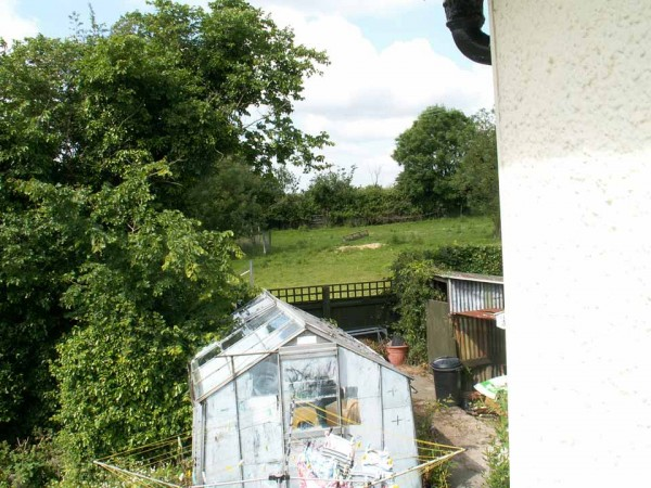 Back of garden 2008