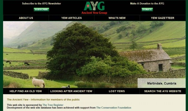 The Ancient Yew Group (AYG) website