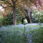 PGG visit to private gardens in Suffolk