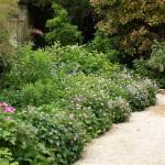 Cerney House Gardens, Cheltenham, Gloucestershire