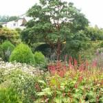 PGG visit to The Garden House, Devon