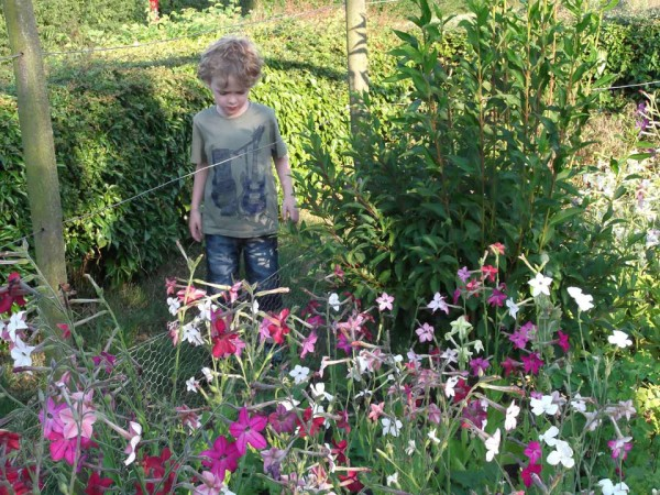 Caleb explores the garden