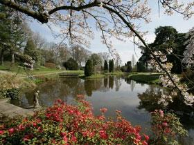 The gardens at Cholmondeley