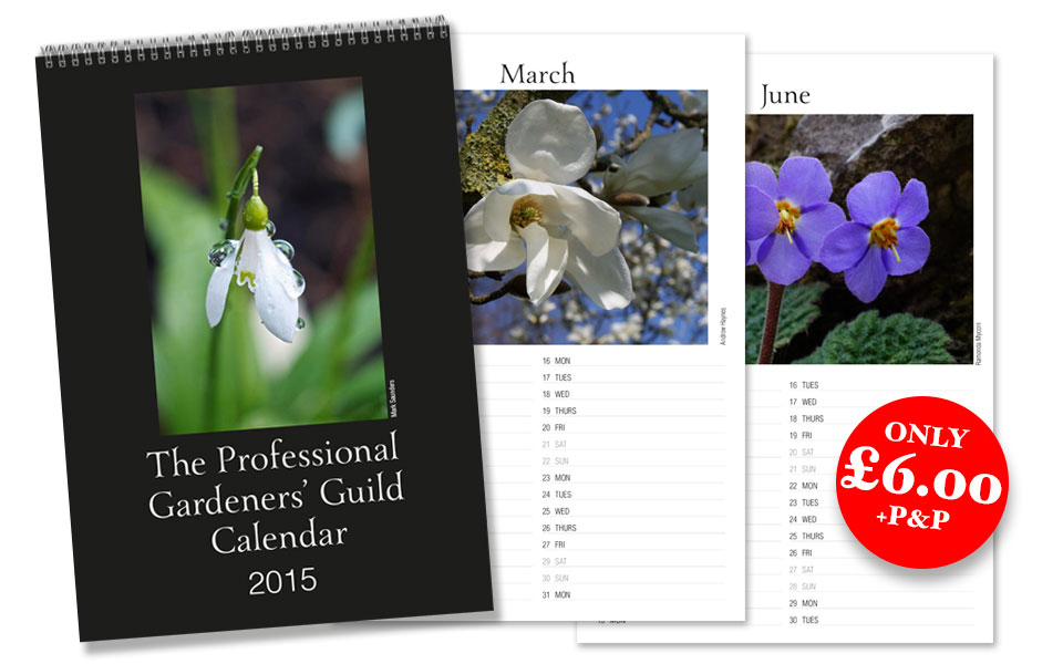 PGG calendar 2015