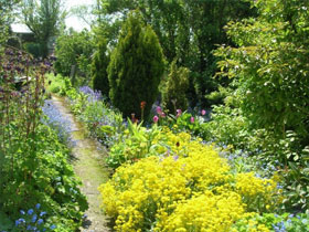 Garden at 10 Low Row, County Durham