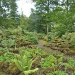 PGG visit to Lowther Castle Gardens