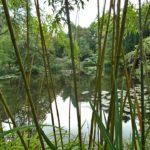 PGG visit to L'Etang de Launay