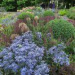 Mount St John gardens, Yorkshire