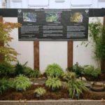 Philip Oosenbrink - Hampton Court Flower Show 2017