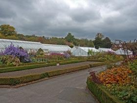 PGG visit to West Dean Gardens, West Sussex.