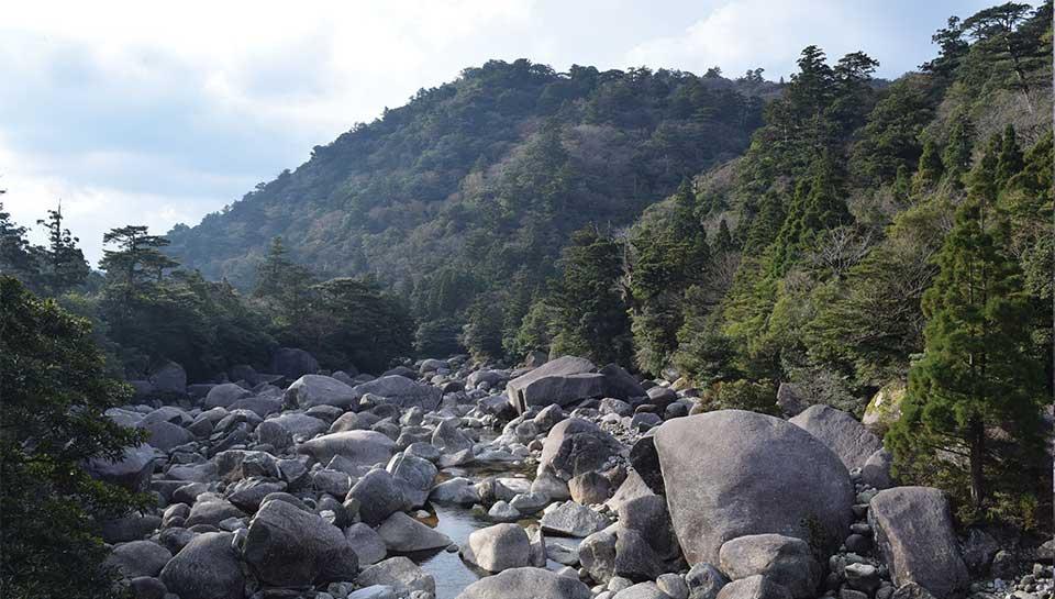 Stairway of boulders