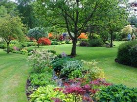 Dabton Garden, Thornhill