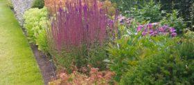 RHS Garden Bridgewater and Charcoal Woods