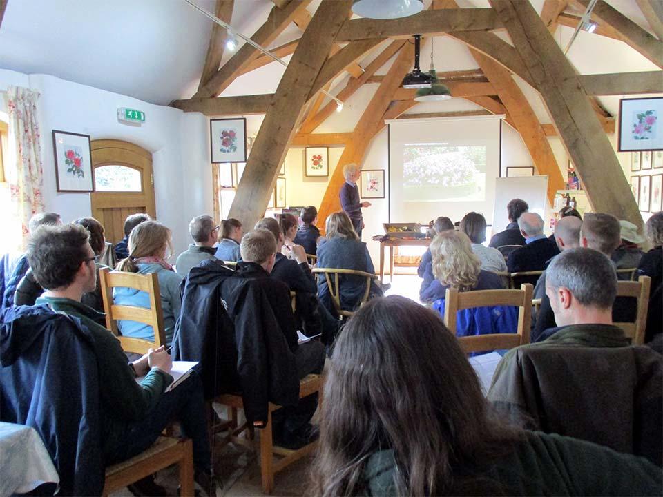 PGG pruning workshop - David Austin Roses -