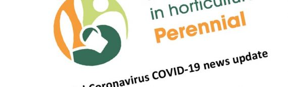 Perennial Coronavirus news update 1st May '20