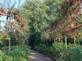Three Hagges Woodmeadow and Skipwith Hall Gardens